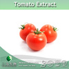 100% lycopene powder Of Tomato Extract Supplied By 3W Exporter