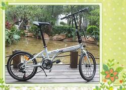 New listing boys bikes,fresh green girls bikes,citizen folding bike