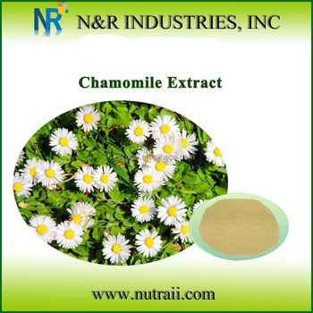 High quality Chamomile extract 10:1