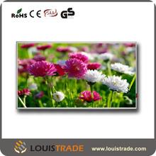 Energy saving yoga room far infrared heater best in China B-P4(6046)
