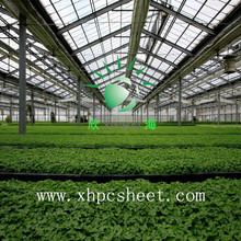 greenhouse Lexan polycarbonate sheet triple wall x structure used for green house