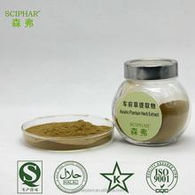 GMP HALAL plantago asiatica l. p.e. aloe vera extract