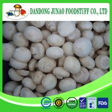 iqf Chinese frzoen champignon mushroom whole