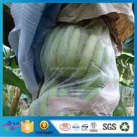 Plain Nonwoven Fruit Bag Security Packing Bag Disposable Grape Cover Bag