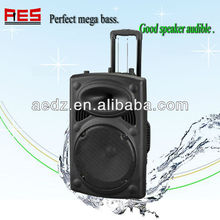 500 Watts 15 inch speaker unit good use with power amplifier