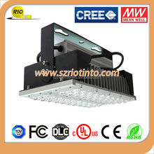 led light warm white cool white bridgelux chips meanwell driver /canopy led lamp 100w