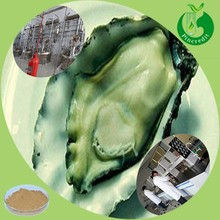 100% natural animal extract oyster extract at best price