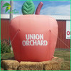 Customized Reasonable Price Advertising Giant Inflatable Apple Model for Sale