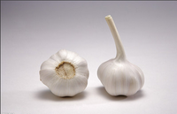 Chinese Original Garlic