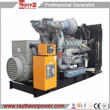 Raytheon Water Cooled Diesel Generator with famous brand Engine/Good quality diesel generator /PLC control diesel generator