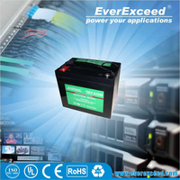 ISO UL CE certificated agm 12v 200ah ups battery