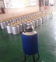 YDS-10 small capacity liquid nitrogen dewar/liquid nitrogen tank/draw vessel