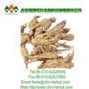 1% Ligustilide powder Angelica Extract for Pharmaceutical