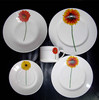 porcelain chinaware set with color box