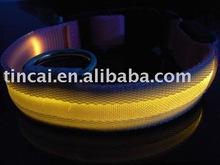 NEW fashion pet product Flashing lights dog collar