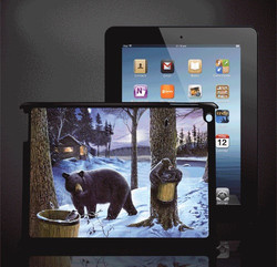 Factory supply PC 3d image protective case for ipad case