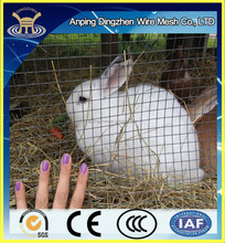 Cheap Colorful Metal Rabbit Breeding Cages