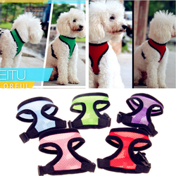 New Design Dog Chest Harness/ Pet Lead Back Collar/ Chest Pet Bag/ Pet Lead Back Collar