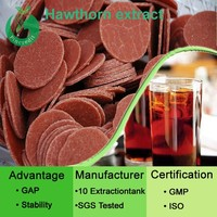 100% Natural Fruit Powder Hawthorn Berry Extract