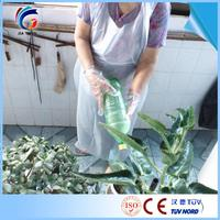 Familiar with ODM Factory Disposable medical surgical hdpe / ldpe disposable veterinary gloves with low price