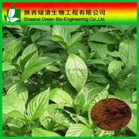 Factory 100% Natural Indigowoad Root Extract/radix Isatidis Extract Powder 5:1 10:1/Radix Isatidis Extract Pow