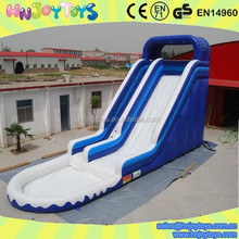 Used Giant Inflatable Water Slide for Adult, Large Inflatable Slide for Pool