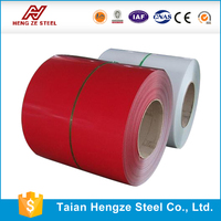 New product prepainted steel all building material from China steel metal supplier