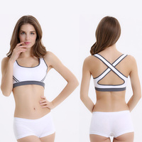 wholesale customized bulk sports ladies bra