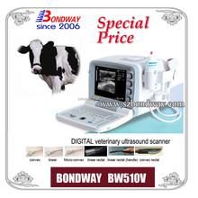 Ultrasound for Animal use BONDWAY BW510V, for imaging on horse, cow, cattle, sheep, goat, dog, etc