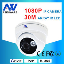 Hisilicon Hi3516C+Sony Imx222 0.001Lux Solution ONVIF 2Mp IR 30M Dome 1080P Network IP Security Camera