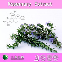 Natural antioxidants for food 20%~60% carnosic acid rosemary extract