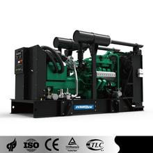 PowerLink 50Hz GE250-BG Green Small Biogas Generator