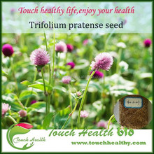 Touchhealthy supply red clover seed grass seeds forage seeds