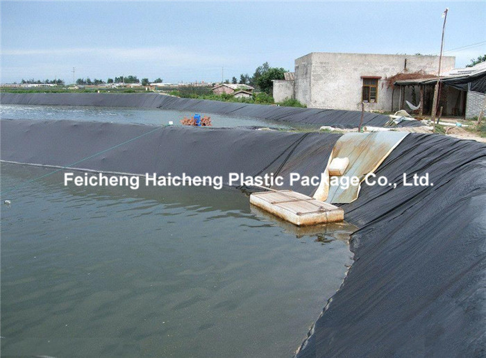 Fish Pond Waterproof 2mm Hdpe Geomembrane Hdpe Pond Liner