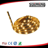 Flexible LED Strip light 220V SMD3528