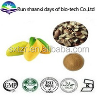 Natural Weight Loss Irvingia Gabonensis Seed Extract / African Wild Mango Extract Powder