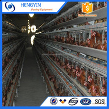 High Quality and New Design A Type Multi-tier Layer Chicken Cage for Sale