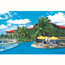 High quality OEM picture of Sea island for home decoration