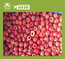 Fresh frozen pitted hawthorn berry hawthorn originals snack food