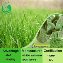 Barley grass juice powder organic barley grass powder barley grass powder