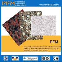 Well-distributed Veins china paradise granite