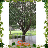 /product-gs/outdoor-artificial-trees-landscaping-green-plastic-leaf-banyan-tree-for-weddings-and-garden-decor-60347442236.html
