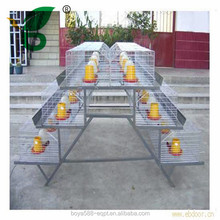 Durable battery 3 tiers automatic chick cages on hot sale