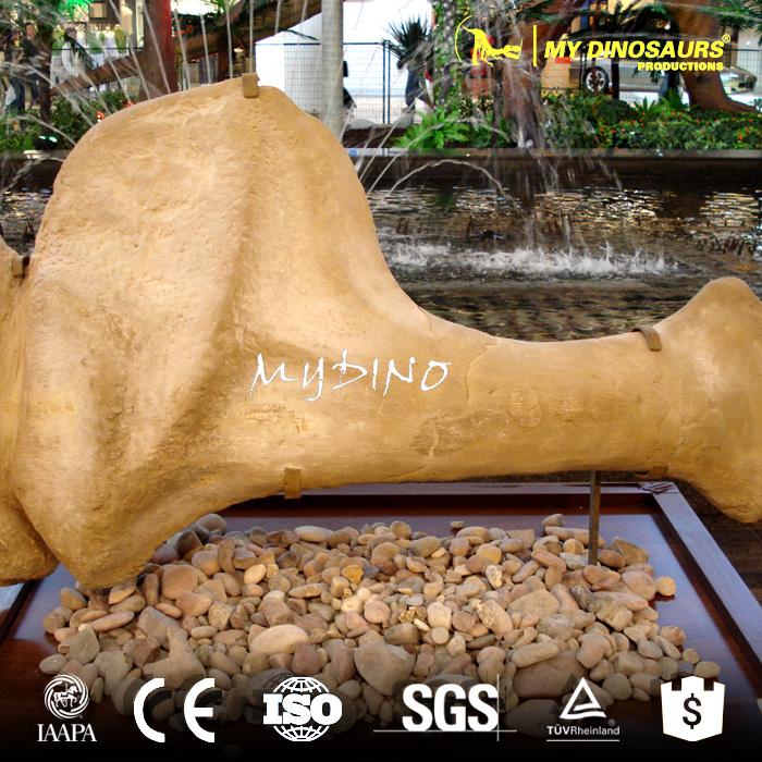 Dinosaur Bone.jpg