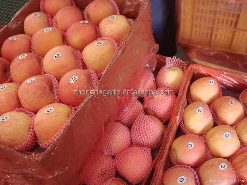 China 2014 crop fresh red delious fuji apple