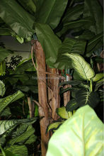 artificial potted banana tree, bonsai plant manufacturers in china