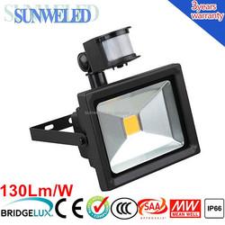 Really IP65 Sensor Head 100W PIR LED SMD Flood Light 30w 50w 70w 100w with CE SAA IES IP65