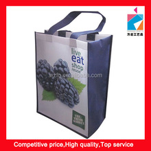 Eco Friendly Promotion PP Laminated Advertising Shopping Bag