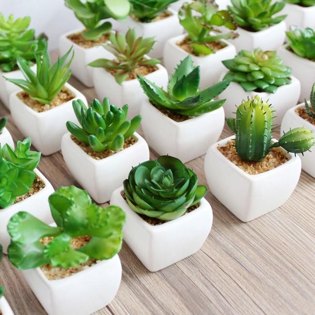 regalo de navidad creativo realista plástico plantas suculentas