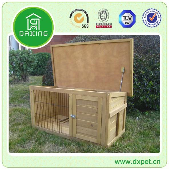 New Rabbit House (1).jpg